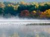 Fog Late Sept #1